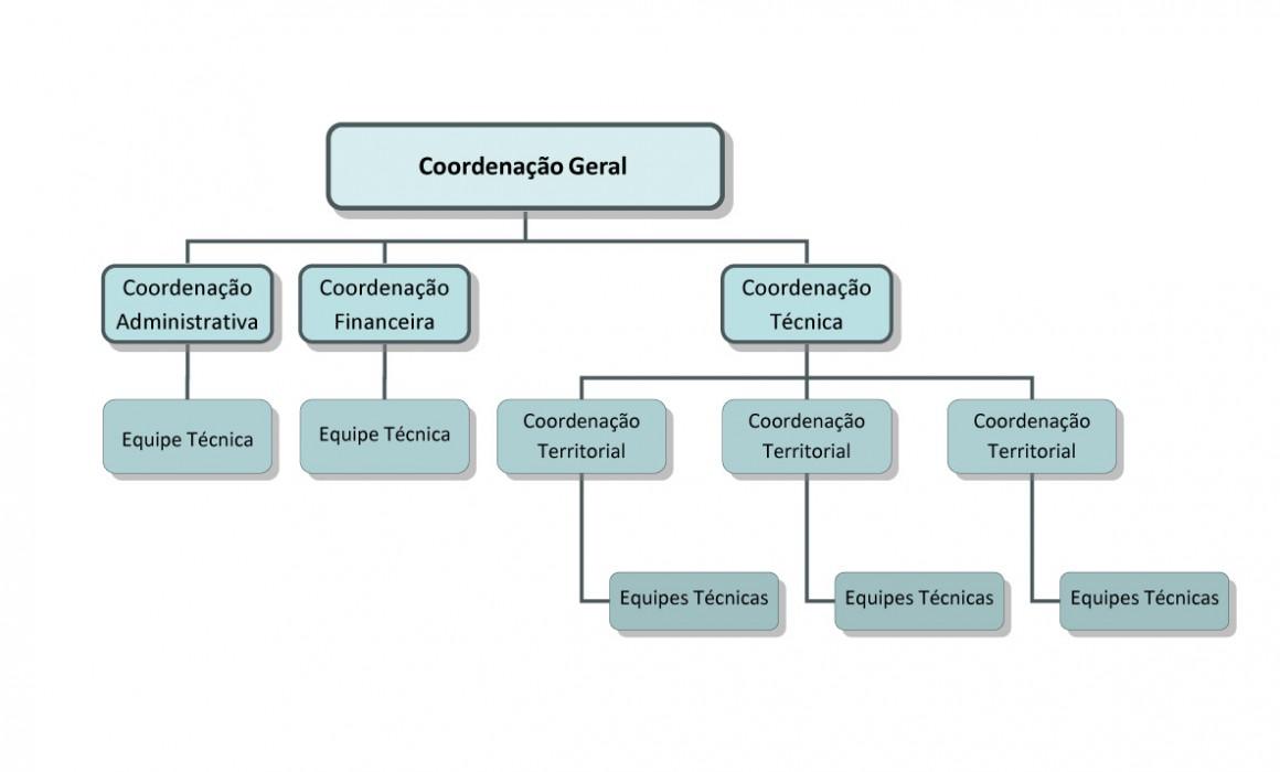 estrutura-organizacional
